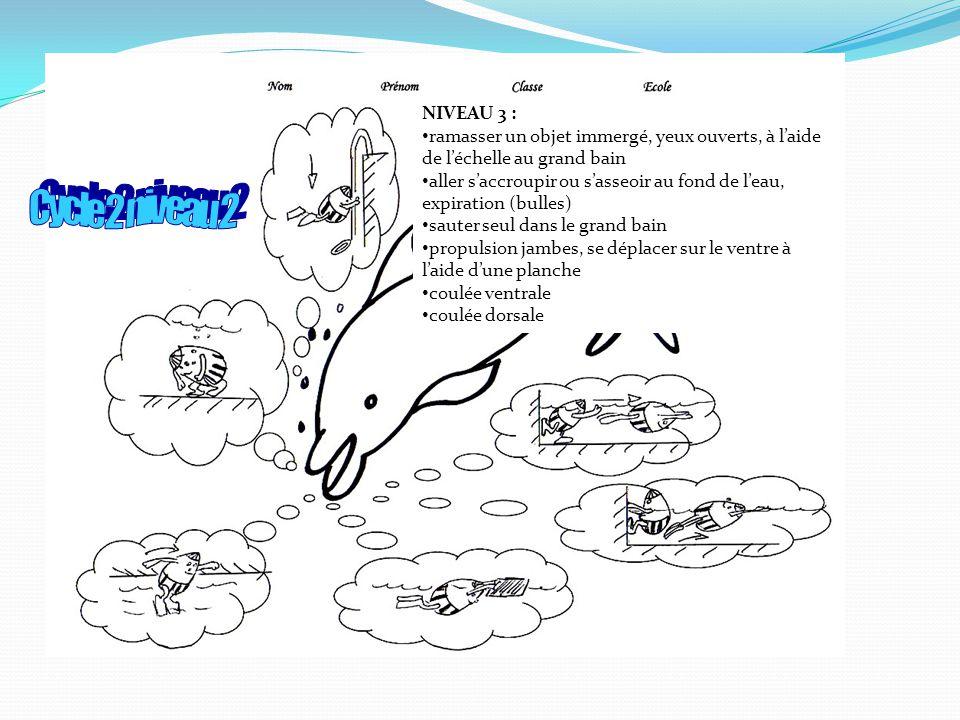 NIVEAU 3 : ramasser un objet immergé, yeux ouverts, à laide de léchelle au grand bain aller saccroupir ou sasseoir au fond de leau, expiration (bulles) sauter seul dans le grand bain propulsion jambes, se déplacer sur le ventre à laide dune planche coulée ventrale coulée dorsale