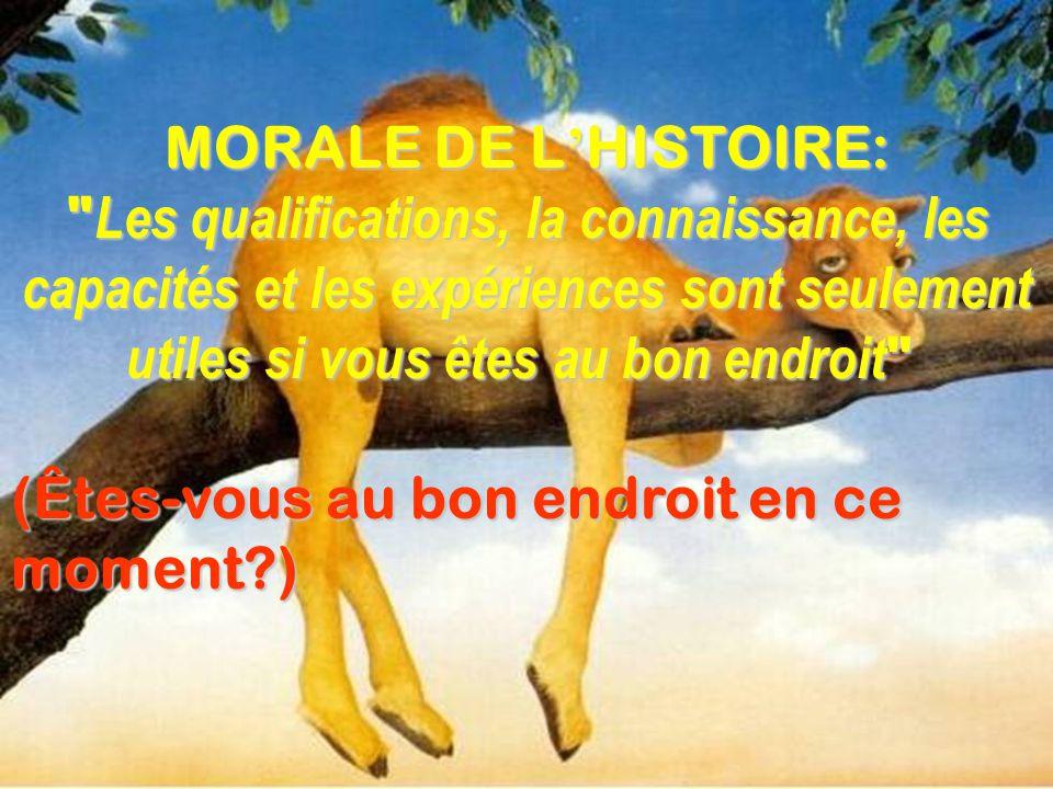 MORALE DE L HISTOIRE: