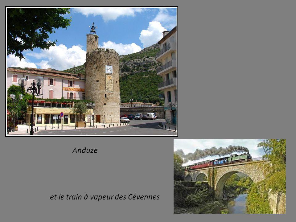 Dans cette belle région : les Gorges du Tarn et celles proches de la Jonte
