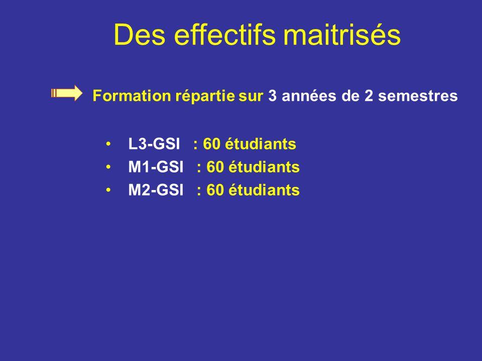 Formation répartie sur 3 années de 2 semestres L3-GSI : 60 étudiants M1-GSI : 60 étudiants M2-GSI : 60 étudiants Des effectifs maitrisés
