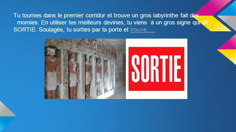 Tu tournes dans le premier corridor et trouve un gros labyrinthe fait des momies.