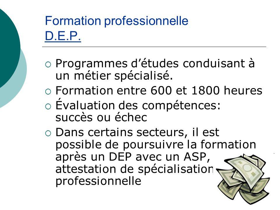 Formation professionnelle D.E.P. Programmes détudes conduisant à un métier spécialisé.
