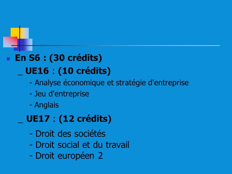 En S6 : (30 crédits) _ UE16 : (10 crédits) - Analyse économique et stratégie d'entreprise - Jeu d'entreprise - Anglais _ UE17 : (12 crédits) - Droit d
