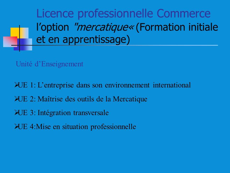 Licence professionnelle Commerce loption mercatique« (Formation initiale et en apprentissage) Unité dEnseignement UE 1: Lentreprise dans son environnement international UE 2: Maîtrise des outils de la Mercatique UE 3: Intégration transversale UE 4:Mise en situation professionnelle