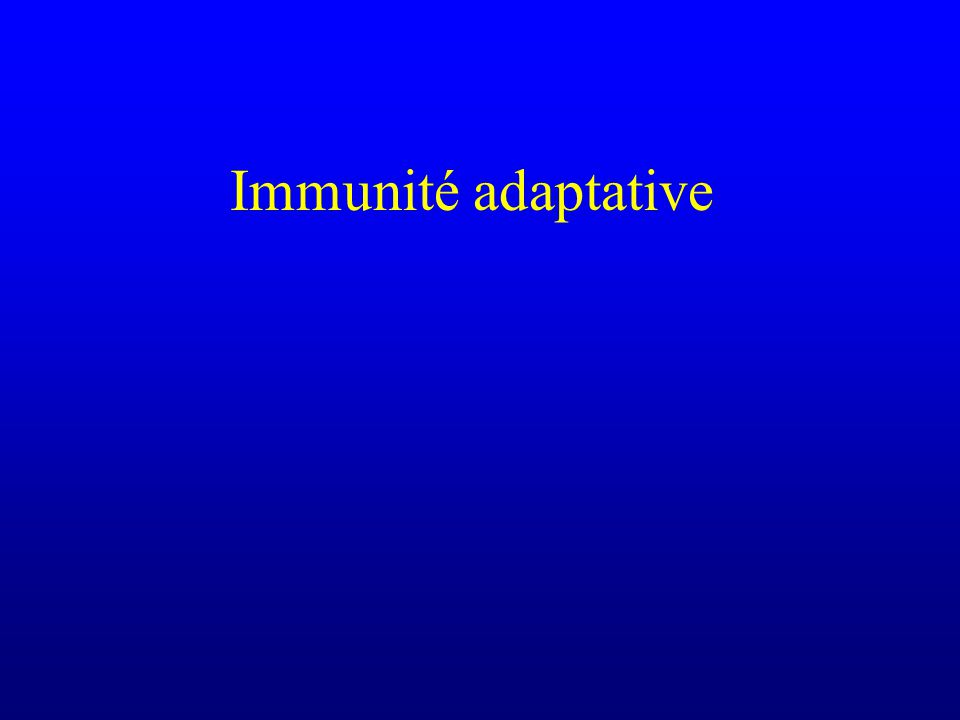 Immunité adaptative