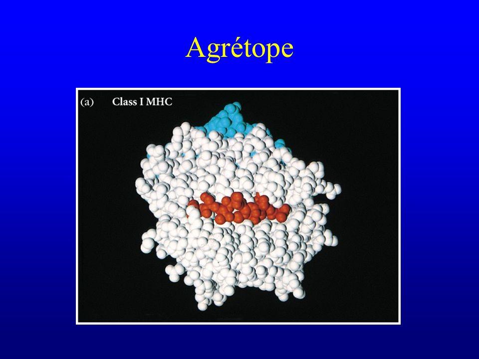 Agrétope