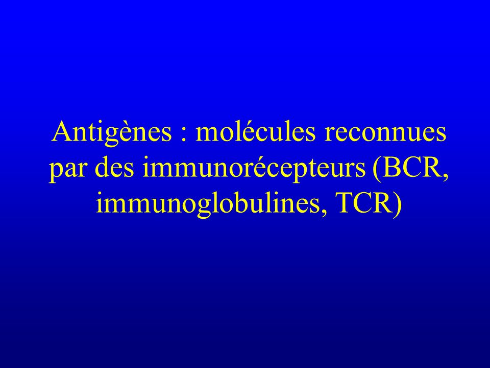 Antigène Concept minimaliste, qualitatif Une substance sera dite antigénique si au moins dans certaines conditions, et au moins chez certains sujets, elle est capable dinduire une réponse en se liant de façon spécifique aux immunorécepteurs (immunoglobulines ou TCR)