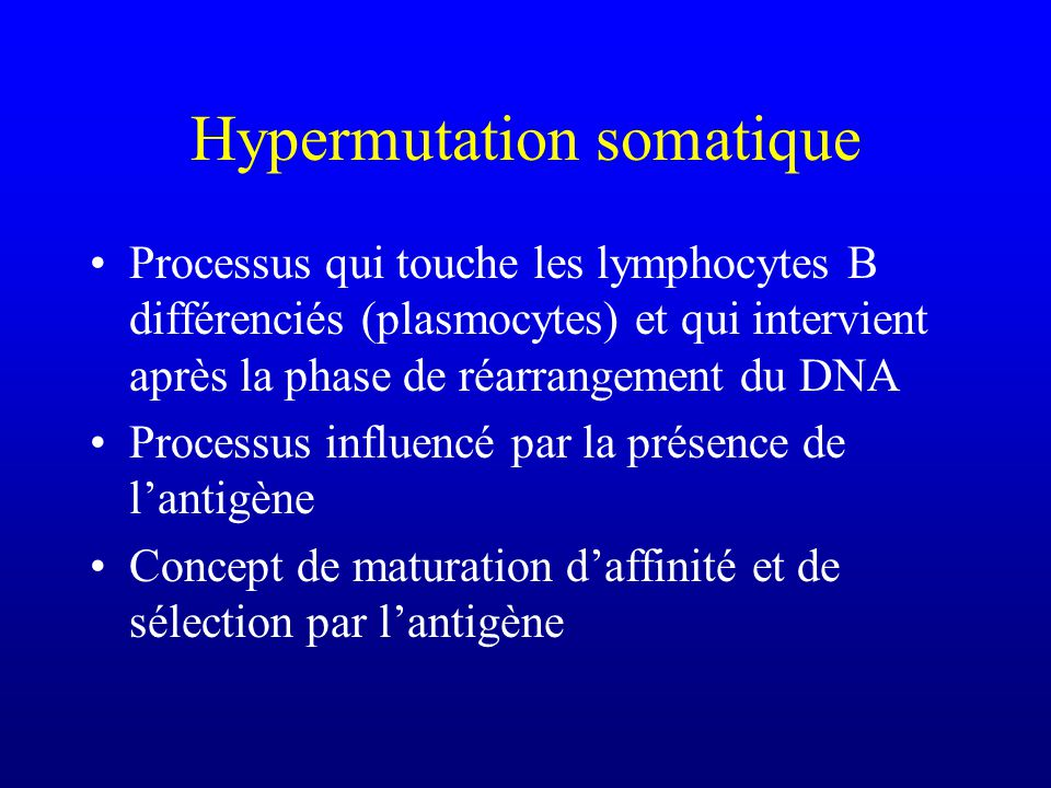 Processus qui touche les lymphocytes B différenciés (plasmocytes) et qui intervient après la phase de réarrangement du DNA Processus influencé par la présence de lantigène Concept de maturation daffinité et de sélection par lantigène