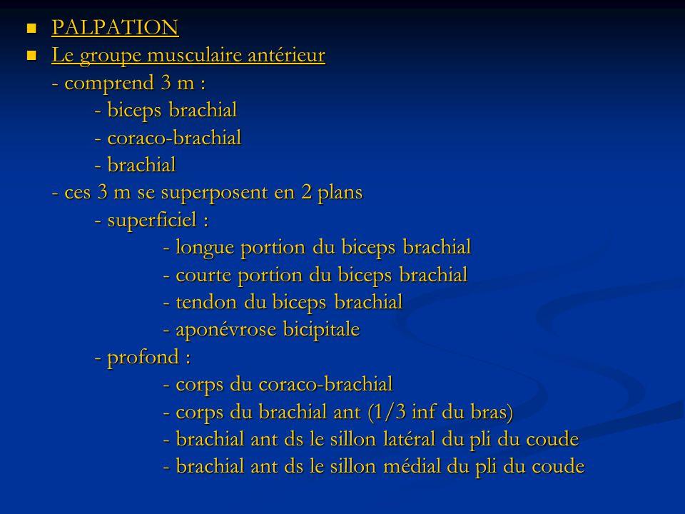 PALPATION PALPATION Le groupe musculaire antérieur Le groupe musculaire antérieur - comprend 3 m : - biceps brachial - coraco-brachial - brachial - ces 3 m se superposent en 2 plans - superficiel : - longue portion du biceps brachial - courte portion du biceps brachial - tendon du biceps brachial - aponévrose bicipitale - profond : - corps du coraco-brachial - corps du brachial ant (1/3 inf du bras) - brachial ant ds le sillon latéral du pli du coude - brachial ant ds le sillon médial du pli du coude