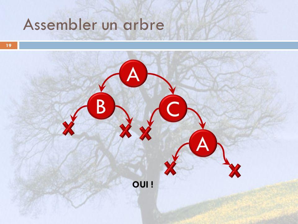 Assembler un arbre 19 A OUI ! B C A