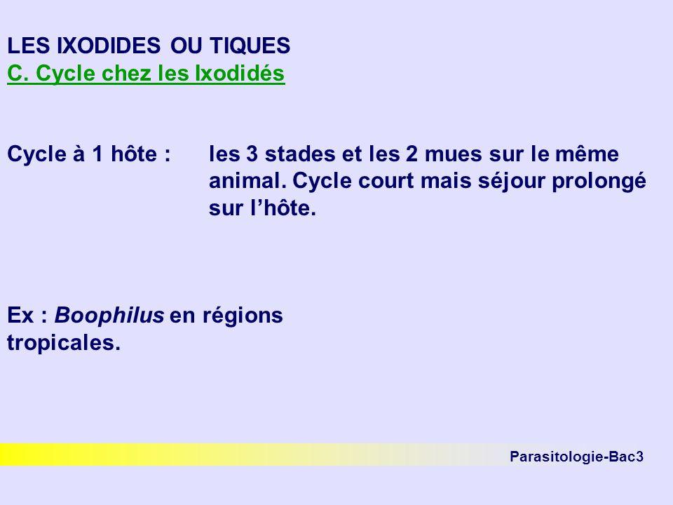 Parasitologie-Bac3 LES IXODIDES OU TIQUES C. Cycle chez les Ixodidés Cycle à 1 hôte :les 3 stades et les 2 mues sur le même animal. Cycle court mais s