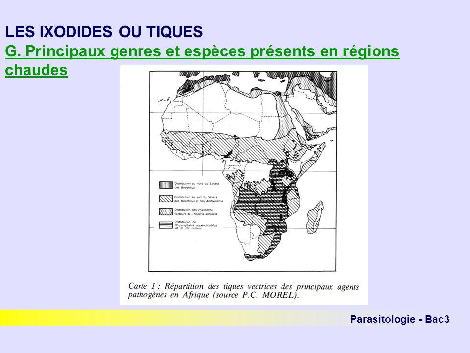 Parasitologie - Bac3 LES IXODIDES OU TIQUES G. Principaux genres et espèces présents en régions chaudes