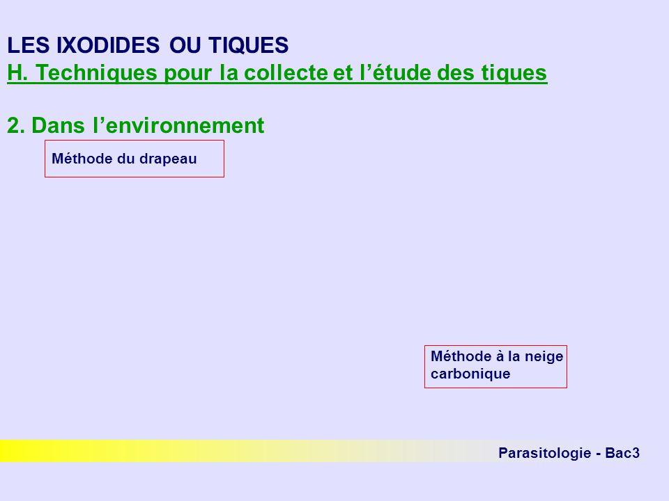 Parasitologie - Bac3 LES IXODIDES OU TIQUES H. Techniques pour la collecte et létude des tiques 2. Dans lenvironnement Méthode du drapeau Méthode à la