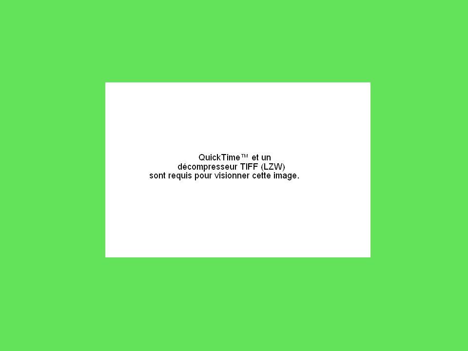 Merci de votre attention Formation interdegrés à Gaillon (Eure), le 14 octobre 2009 André OUZOULIAS, professeur à lIUFM de Versailles-UCP (Université de Cergy-Pontoise) Département PEPSSE (Philosophie, Épistémologie, Psychologie, Sociologie et Sciences de lÉducation)