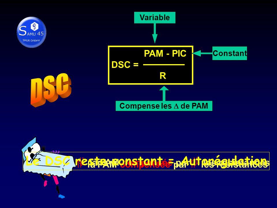 DSC = PAM - PIC DSC = R Variable Constant Compense les de PAM la PAM compensée par les résistances Le DSC reste constant = Autorégulation