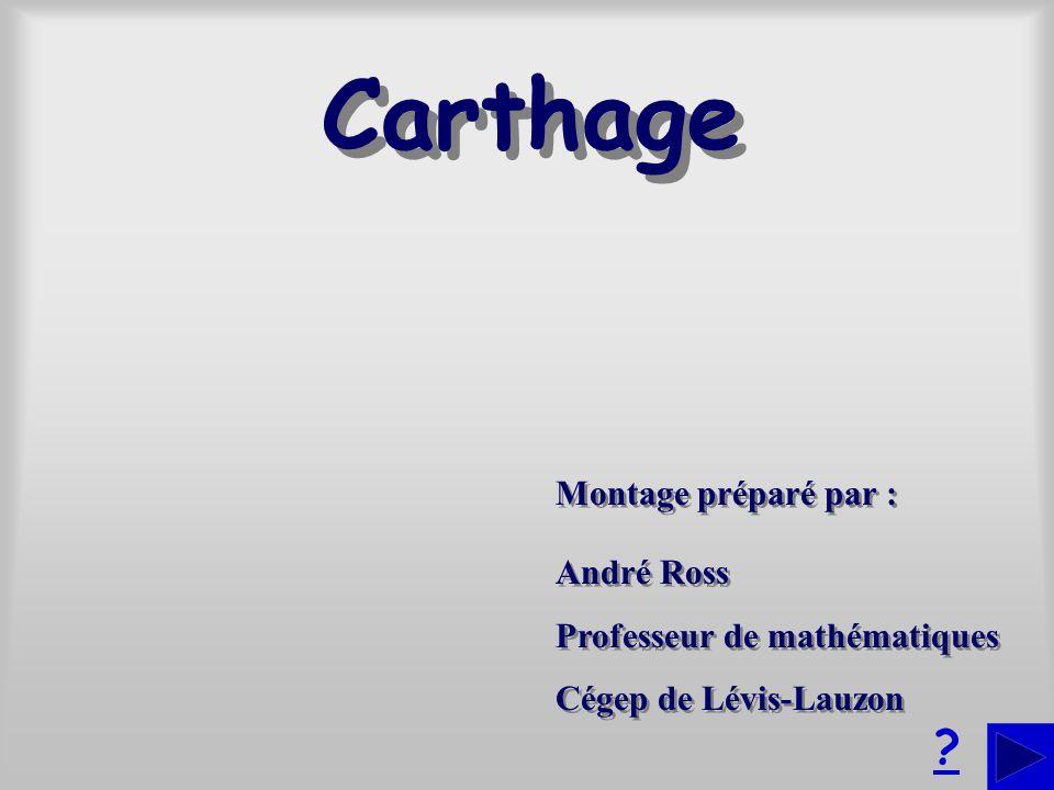 Montage préparé par : André Ross Professeur de mathématiques Cégep de Lévis-Lauzon André Ross Professeur de mathématiques Cégep de Lévis-Lauzon .