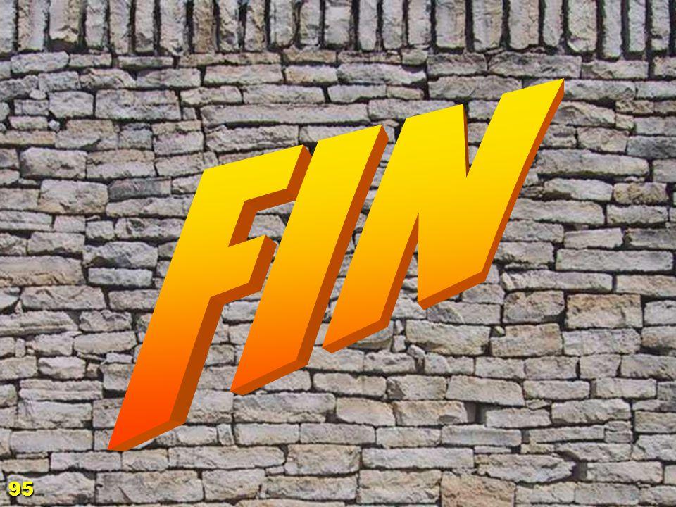 fin 95
