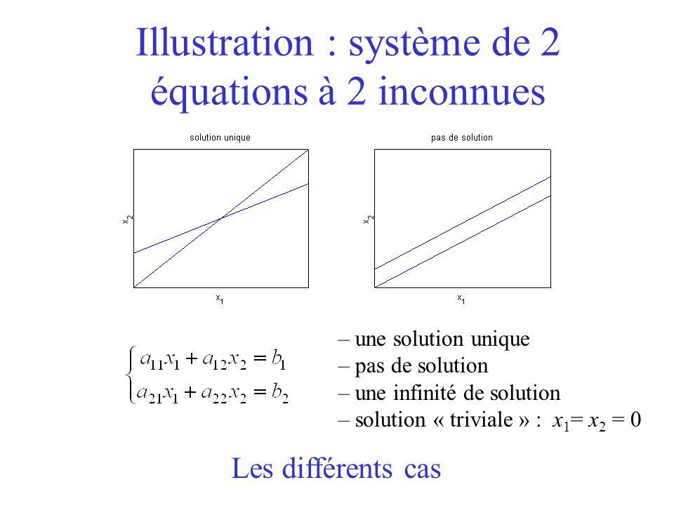 Illustration : système de 2 équations à 2 inconnues – une solution unique – pas de solution – une infinité de solution – solution « triviale » : x 1 = x 2 = 0 Les différents cas