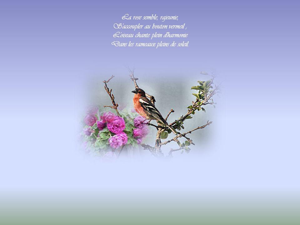La rose semble, rajeunie, S accoupler au bouton vermeil ; L oiseau chante plein d harmonie Dans les rameaux pleins de soleil.