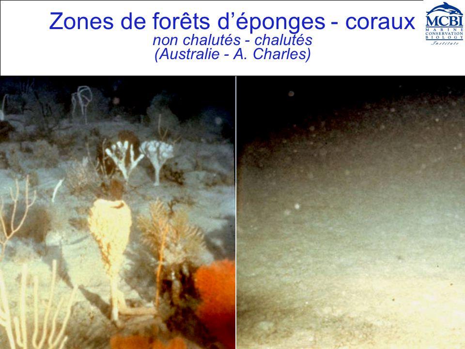 Zones de forêts déponges - coraux non chalutés - chalutés (Australie - A. Charles)