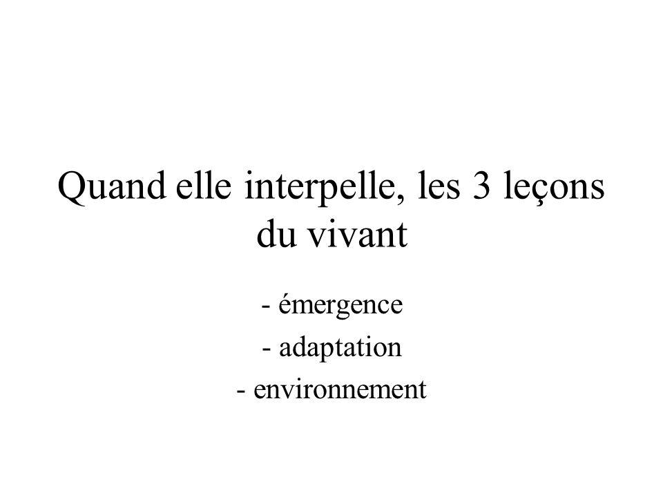 Quand elle interpelle, les 3 leçons du vivant - émergence - adaptation - environnement