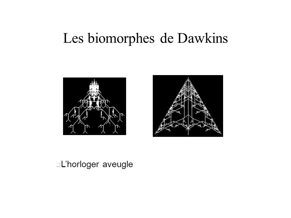Les biomorphes de Dawkins Lhorloger aveugle