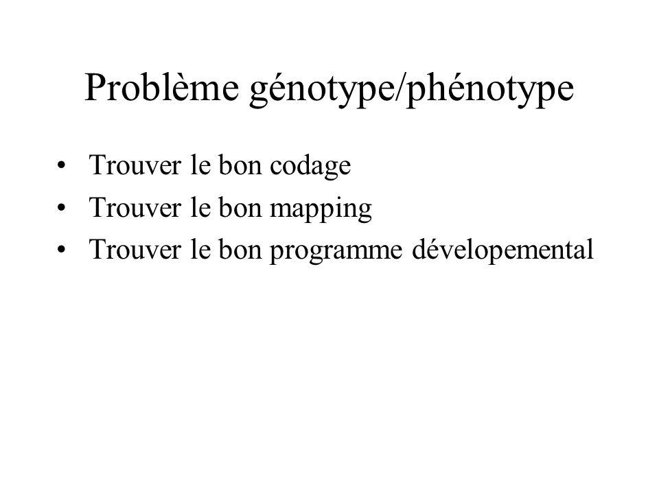 Problème génotype/phénotype Trouver le bon codage Trouver le bon mapping Trouver le bon programme dévelopemental