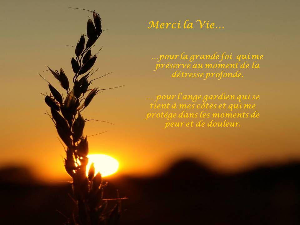 Merci la Vie… …pour la grande foi qui me préserve au moment de la détresse profonde.