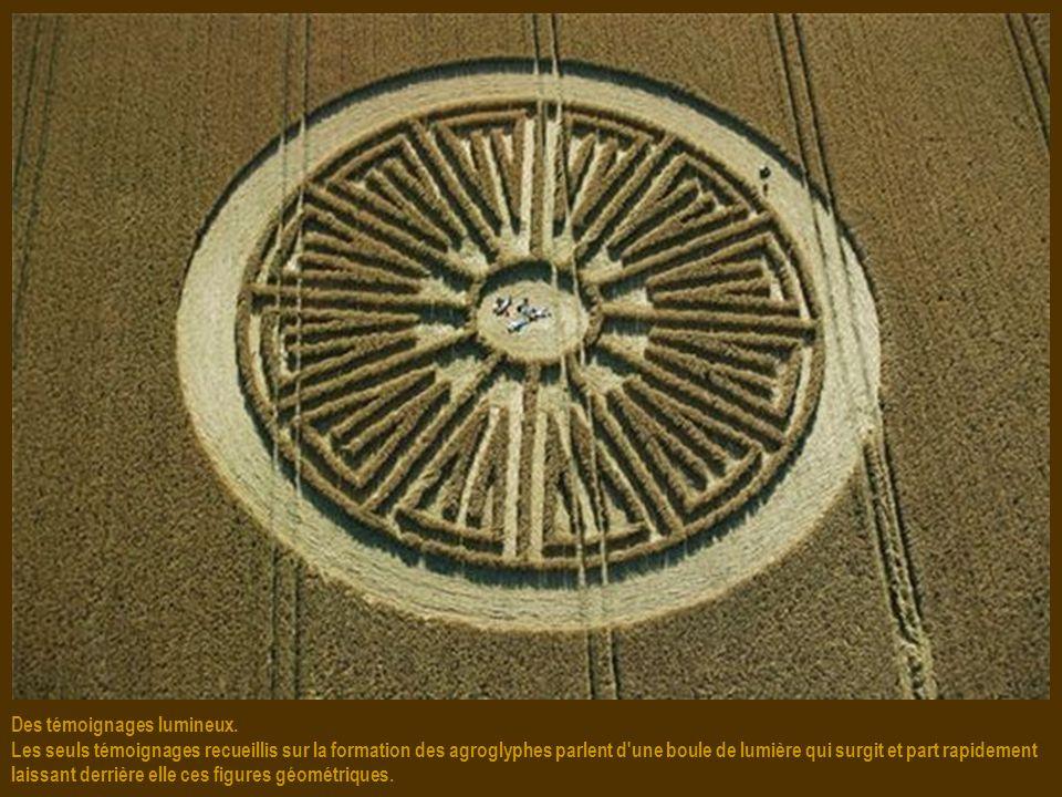 Vérité ou simple canular ? En septembre 1991, deux artistes britanniques, Doug Bower et Dave Chorley, ont avoué que 200 crops circles étaient leurs œu