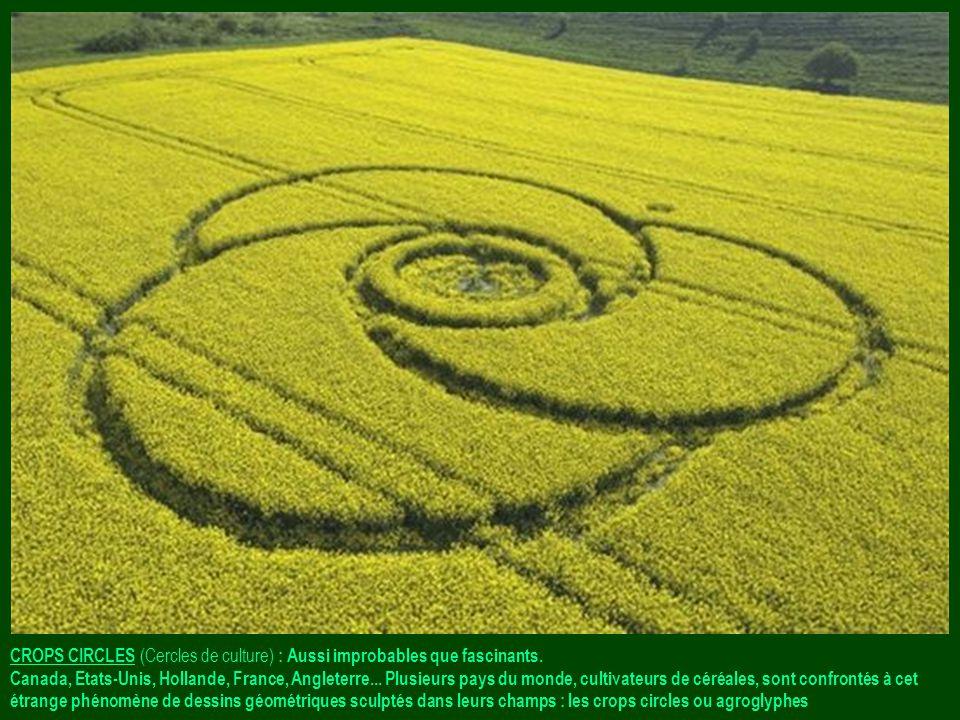 CROPS CIRCLES (Cercles de culture) : Aussi improbables que fascinants.