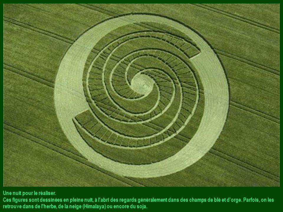 CROPS CIRCLES (Cercles de culture) : Aussi improbables que fascinants. Canada, Etats-Unis, Hollande, France, Angleterre... Plusieurs pays du monde, cu