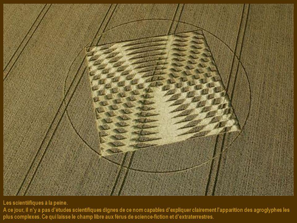 Un astrophysicien perce son mystère. La figure découverte par Lucy Pringle fait plus de 45 mètres de diamètre et se trouve sur une colline du Wiltshir