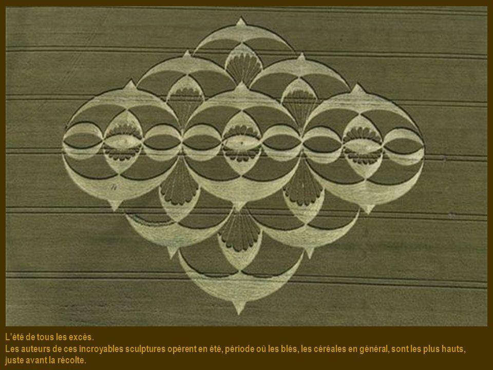Visibles du ciel. La taille des crops circles varie de quelques dizaines de mètres à plusieurs centaines de mètres de diamètre, d'où une excellente vu