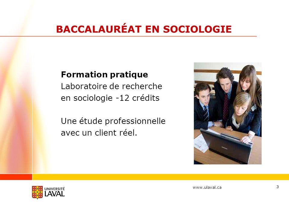 www.ulaval.ca 4 Exemple de projets Formation pratique Laboratoire de recherche en sociologie Client : Ligue des Droits et Libertés – section Québec Projet : Vers des ateliers de prévention et de résolution du « taxage »