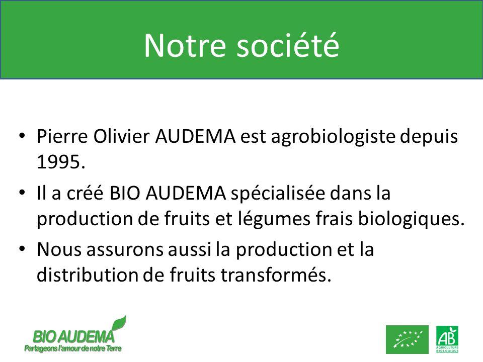Notre société Pierre Olivier AUDEMA est agrobiologiste depuis 1995. Il a créé BIO AUDEMA spécialisée dans la production de fruits et légumes frais bio