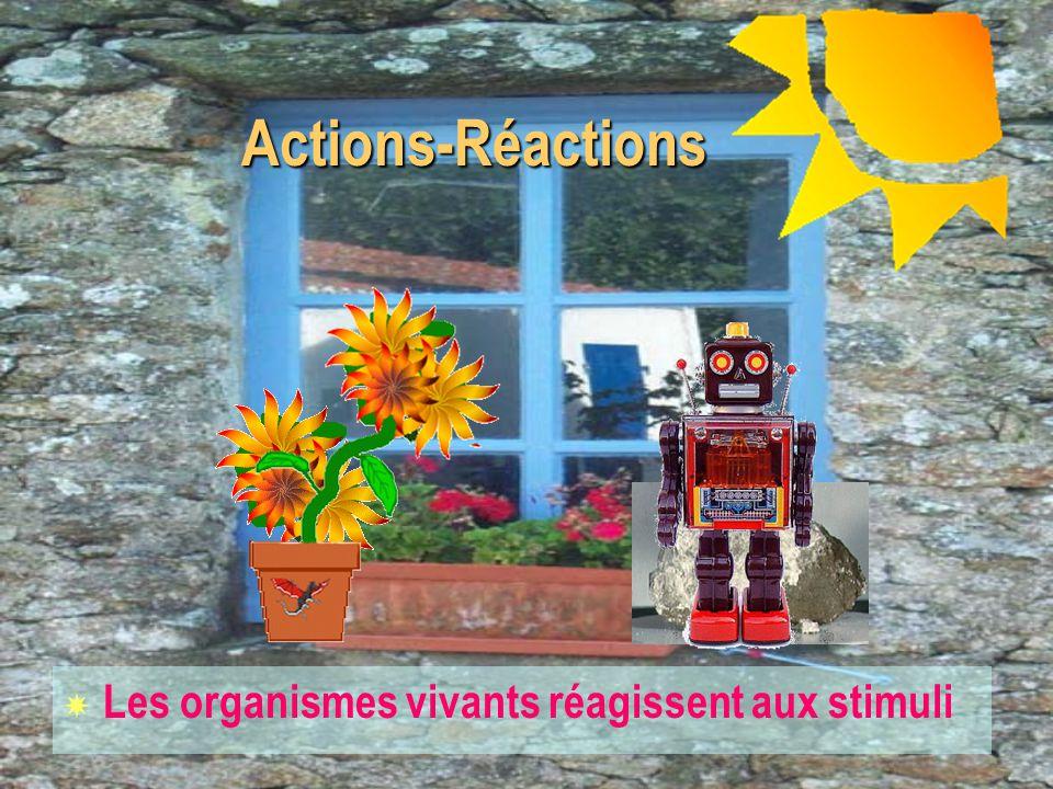 Organisation Organisation X Homogène X Complexe Matière Inerte Matière Vivante et les robots?
