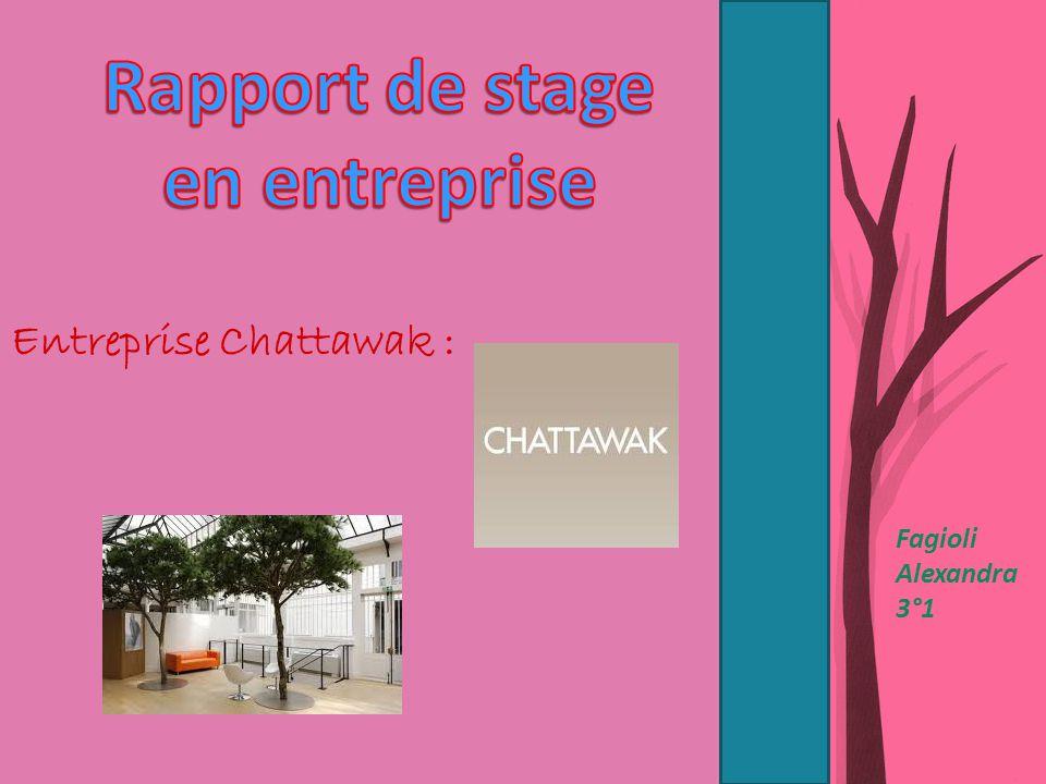 Fagioli Alexandra 3°1 Entreprise Chattawak :