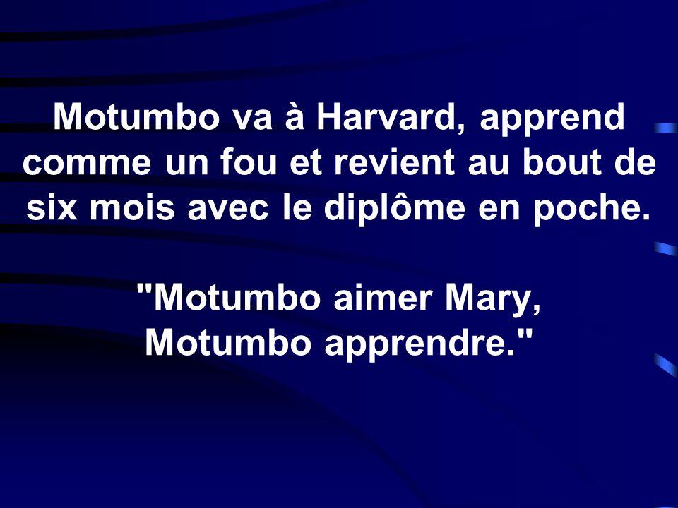 Motumbo va à Harvard, apprend comme un fou et revient au bout de six mois avec le diplôme en poche.