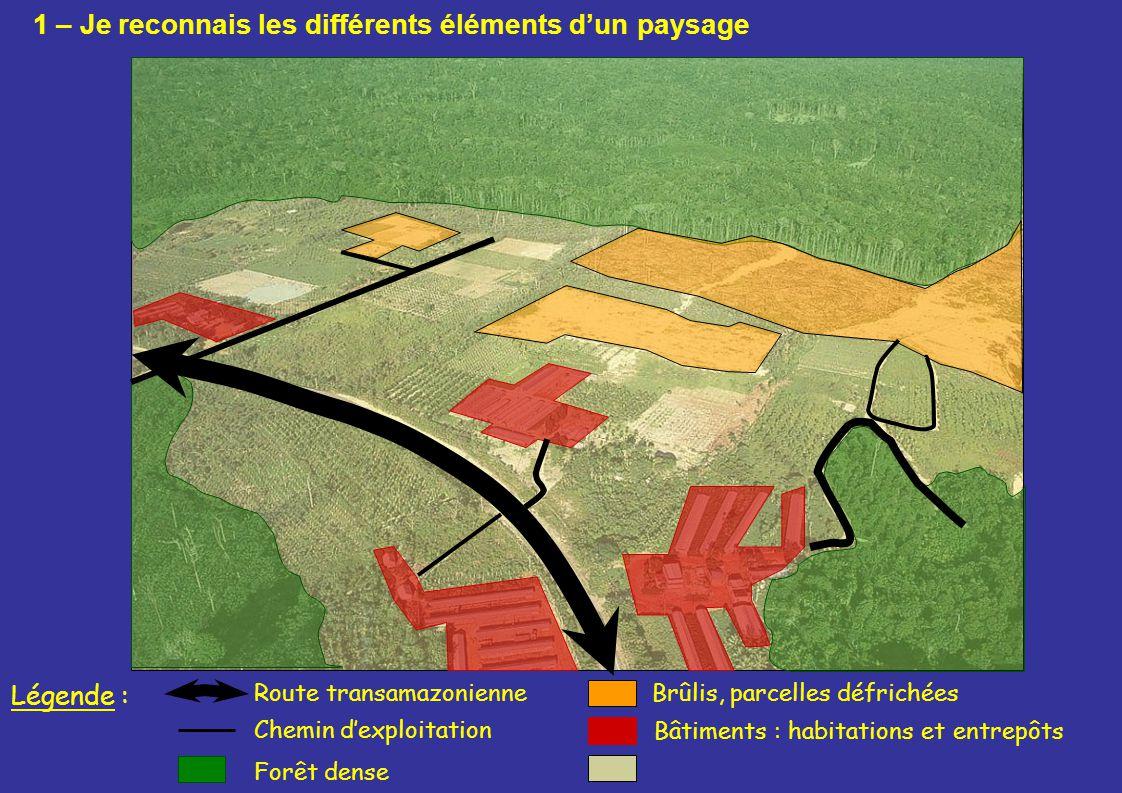 Bâtiments : habitations et entrepôts Route transamazonienneBrûlis, parcelles défrichées Forêt dense Légende : Chemin dexploitation 1 – Je reconnais le