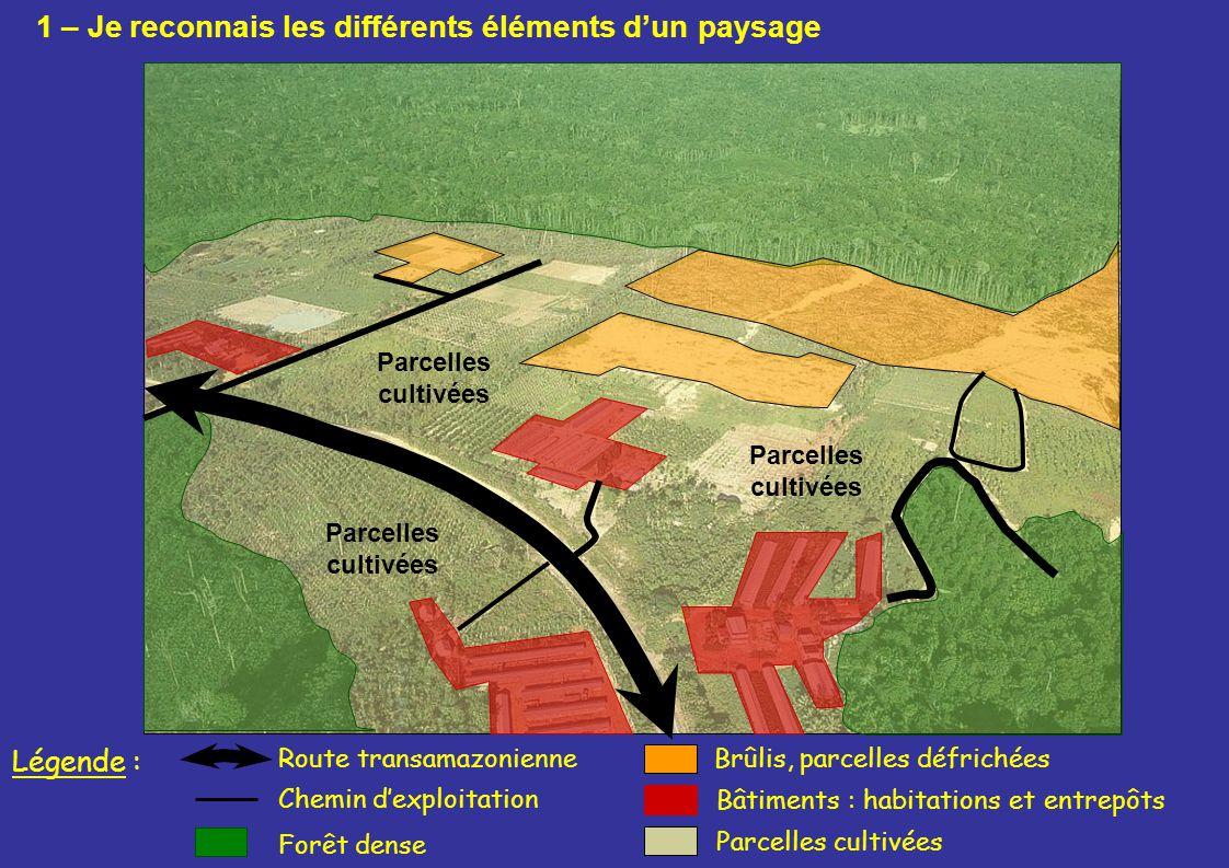 Parcelles cultivées Bâtiments : habitations et entrepôts Route transamazonienneBrûlis, parcelles défrichées Parcelles cultivées Forêt dense Légende :
