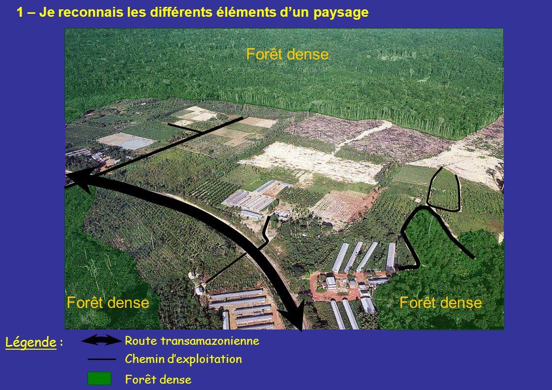 Forêt dense Route transamazonienne Forêt dense Légende : Chemin dexploitation 1 – Je reconnais les différents éléments dun paysage