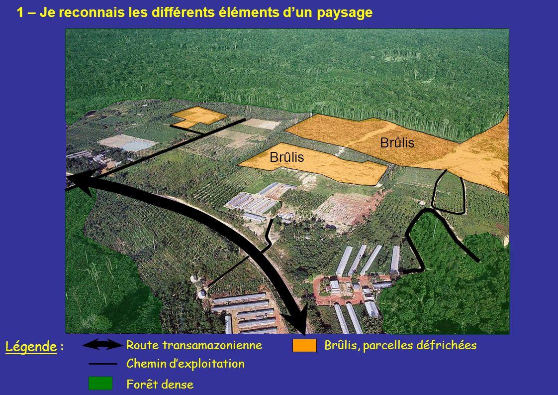 Brûlis Route transamazonienneBrûlis, parcelles défrichées Forêt dense Légende : Chemin dexploitation 1 – Je reconnais les différents éléments dun pays