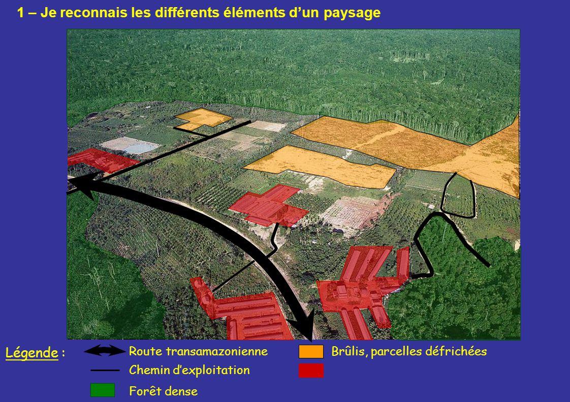 Route transamazonienneBrûlis, parcelles défrichées Forêt dense Légende : Chemin dexploitation 1 – Je reconnais les différents éléments dun paysage