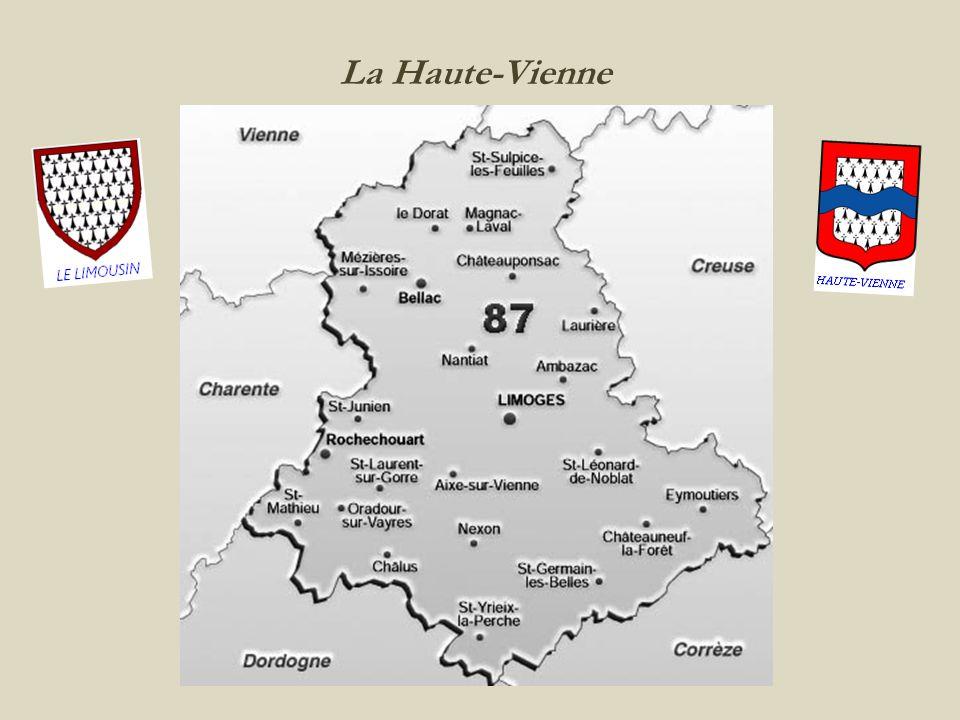 Limoges les halles centrales