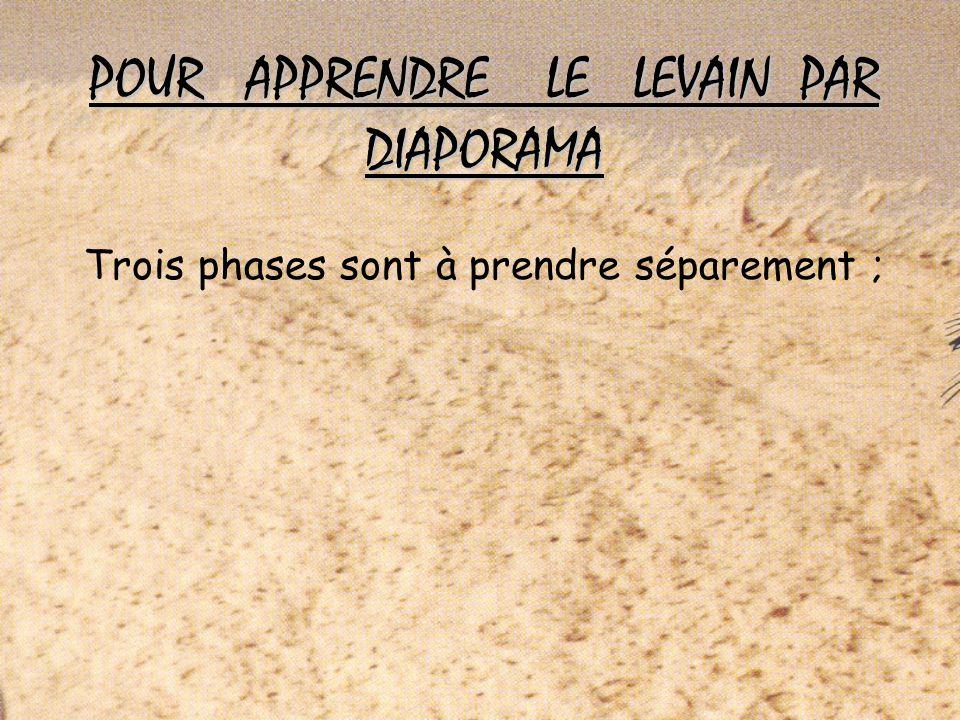 POUR APPRENDRE LE LEVAIN PAR DIAPORAMA Trois phases sont à prendre séparement ;