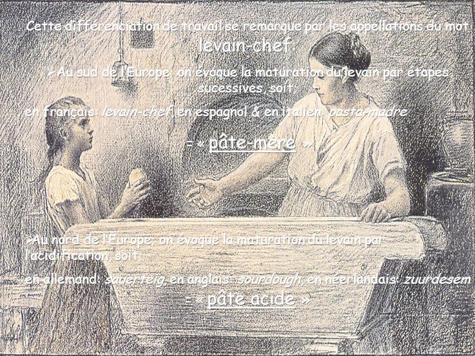 Maintenant, comparons pour « muscler » notre discernment et voyons les procédés allemands. Attention !, lajout de levure est souvent pratiqué lors de