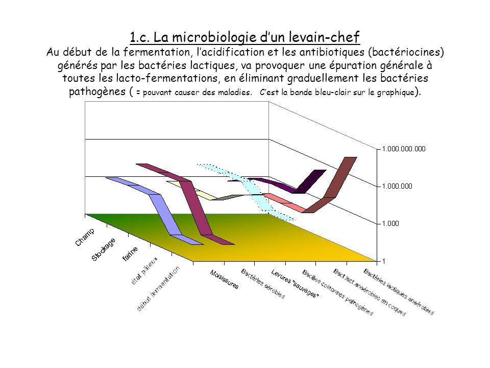 1.b. La microbiologie dun levain-chef Létat pâteux va inverser les données environnementales,le milieu devient anaérobie ( sans air ), du coup les bac