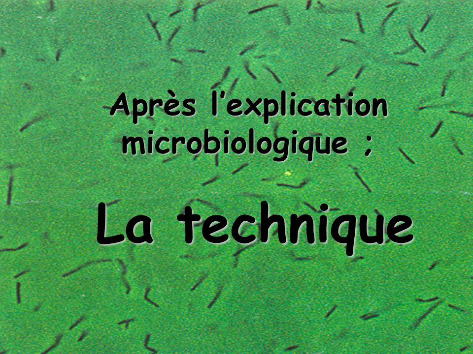 Trois autres chiffres Trois autres chiffres ! ---Le décret français sur le levain (1993) autorise un ajout de levure de 0,2%/ kg.de farine à la pétris