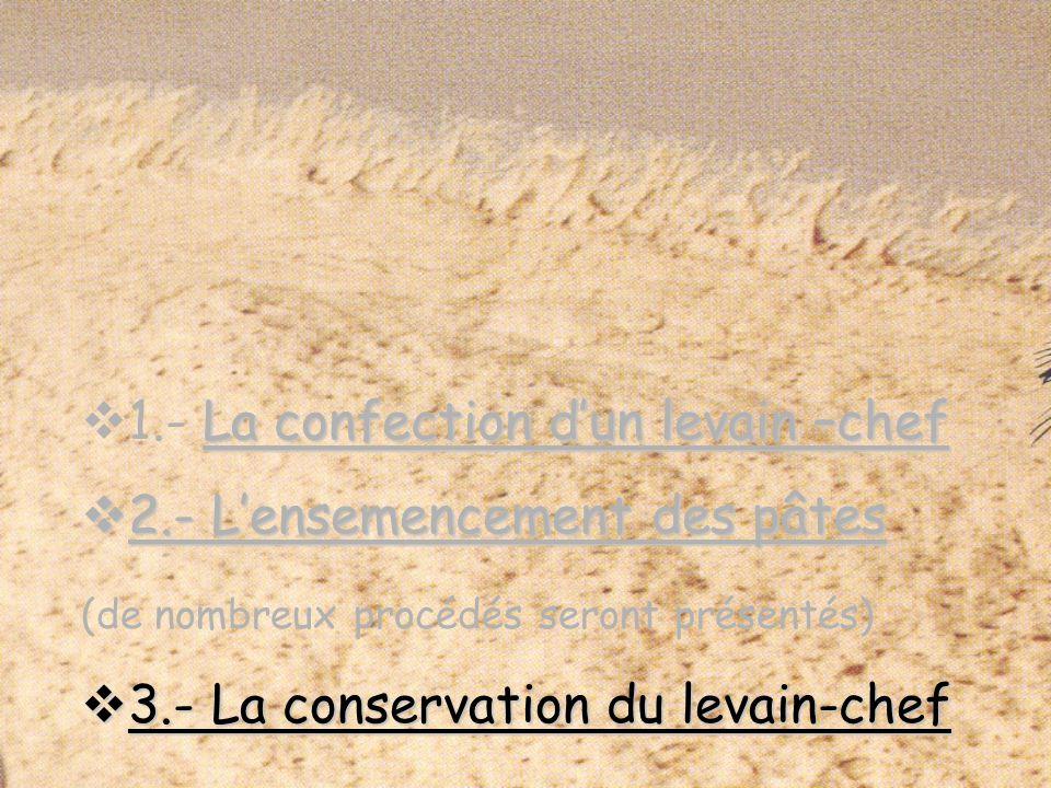 La confection dun levain –chef 1.- La confection dun levain –chef 2.- Lensemencement des pâtes 2.- Lensemencement des pâtes (de nombreux procédés seront présentés) 3.- La conservation du levain-chef 3.- La conservation du levain-chef