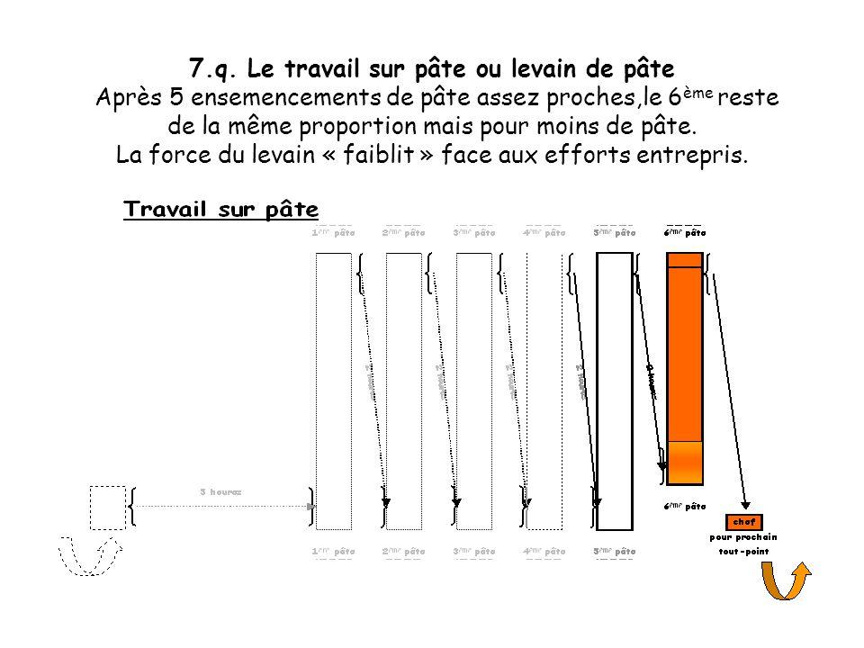 7.p. Le travail sur pâte ou levain de pâte Après 5 ensemencements de pâte assez proches,le 6 ème reste de la même proportion mais pour moins de pâte.